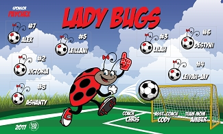 B2017 Lady Bugs 3x5 Banner