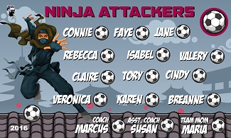 B1867 Ninja Attackers 3x5 Banner