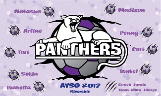 B2136 Panthers 3x5 Banner