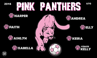 B1807 Pink Panthers 3x5 Banner
