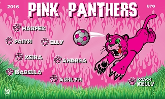 B1781 Pink Panthers 3x5 Banner