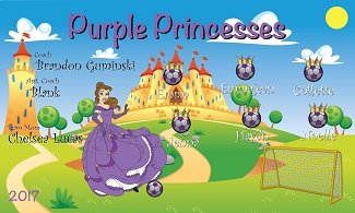 B2130 Purple Princesses 3x5 Banner