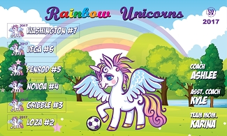 B2110 Rainbow Unicorns 3x5 Banner