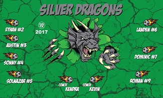 B2120 Silver Dragons 3x5 Banner