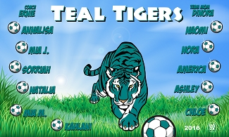 B1789 Teal Tigers 3x5 Banner