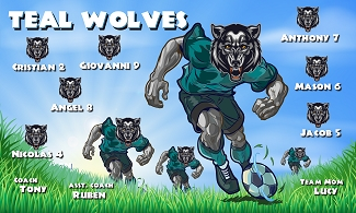 B2076 Teal Wolves 3x5 Banner