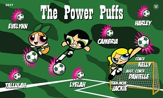 B2078 Power Puffs 3x5 Banner