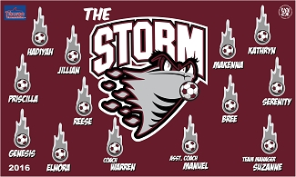B1722 The Storm 3x5 Banner