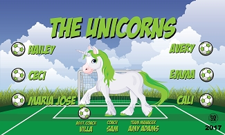 B2068 The Unicorns 3x5 Banner