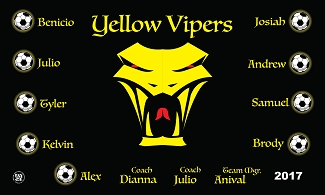 B2055 Yellow Vipers 3x5 Banner