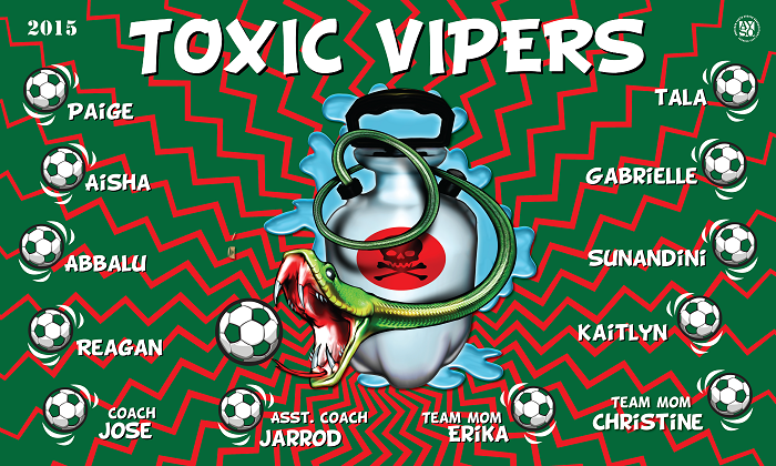 B1381 Toxic Vipers 3x5 Banner