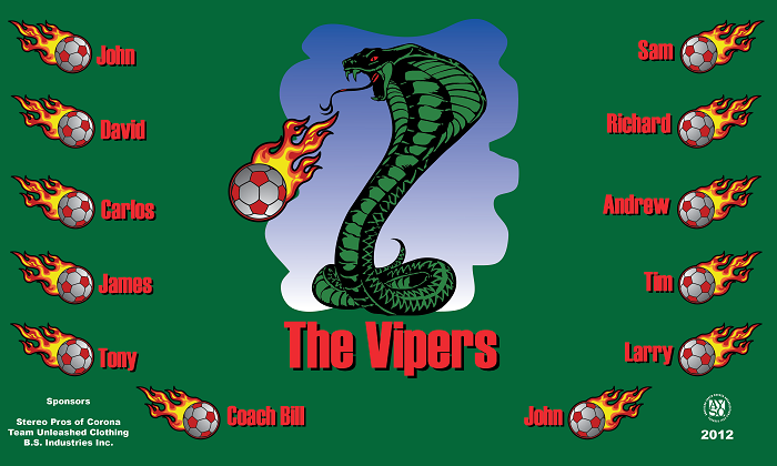 B1227 The Vipers 3x5 Banner