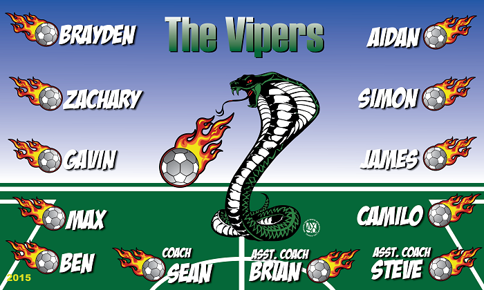 B1350 Vipers 3x5 Banner