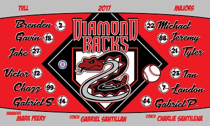 B1906 Diamond Backs 3x5 Banner