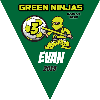 P1018 Green Ninjas Triangle Pennant