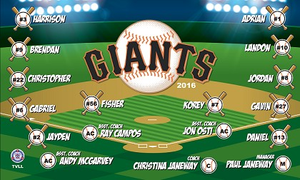 B1403 Giants Baseball 3x5 Banner 2